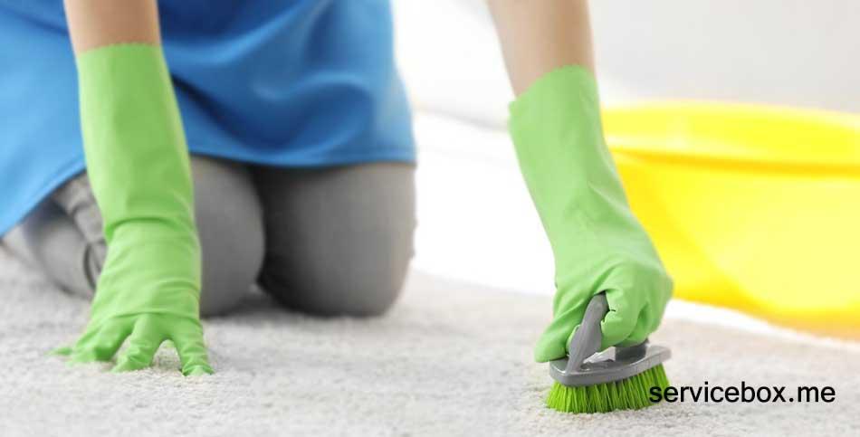 کارگر زن برای نظافت منزل